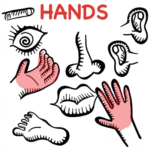 for Your Hands
